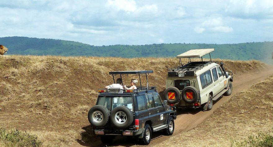 Safari i Afrika giver oplevelser for livet