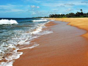 Sri_Lanka_Rejse