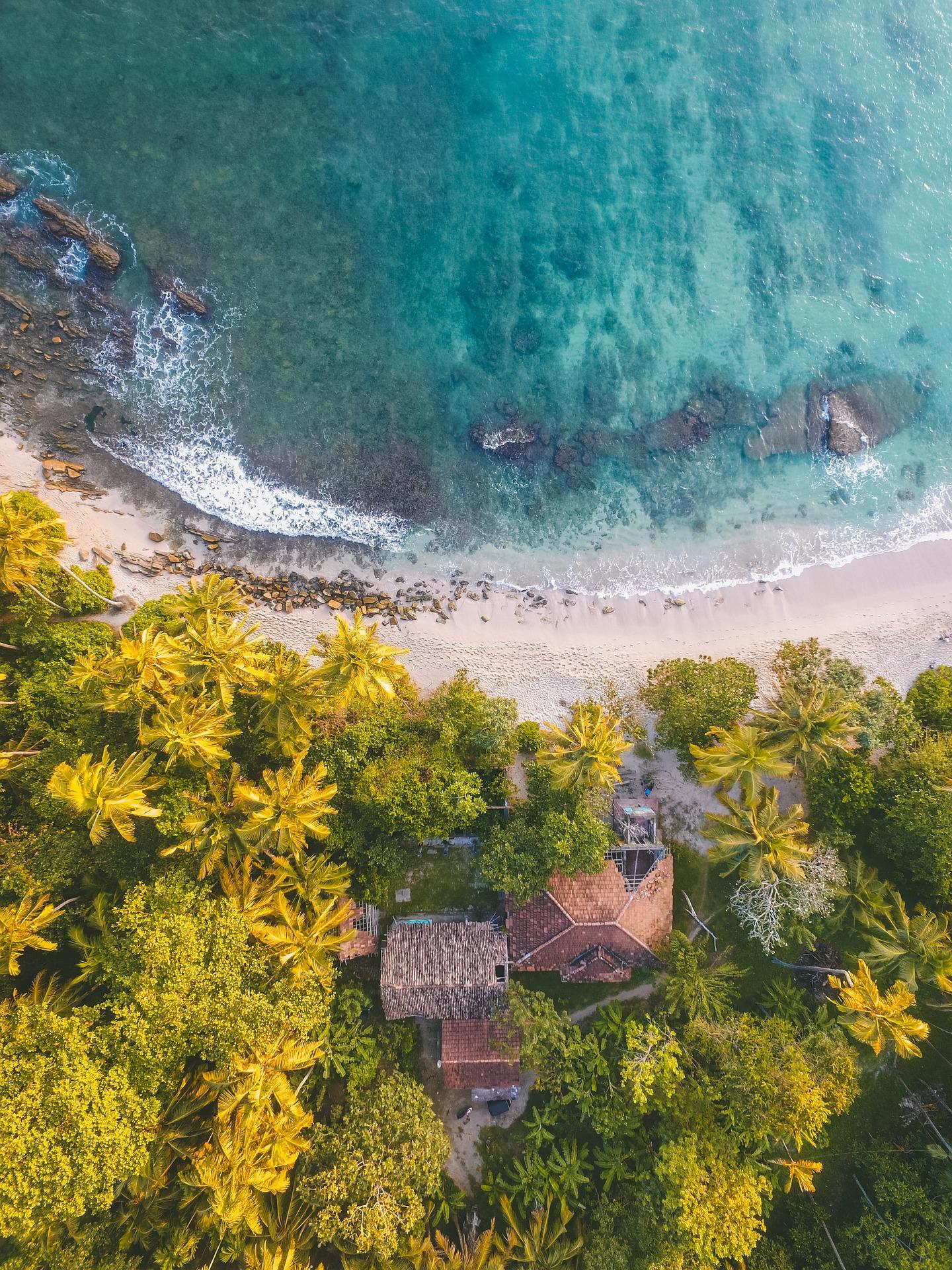 Den oversete drømmerejse: Sri Lanka